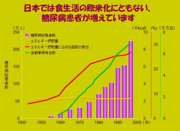 日本では食生活が欧米化したことによって糖尿病が増えています