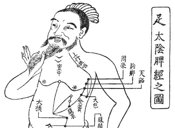 東洋医学「気の流れ」図