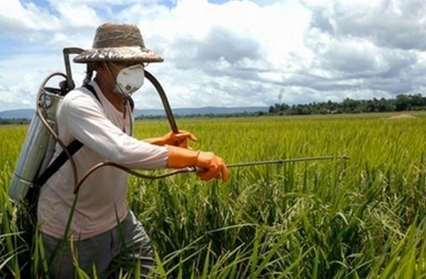 農薬を散布する姿