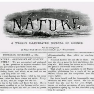 Nature研究論文の問題点