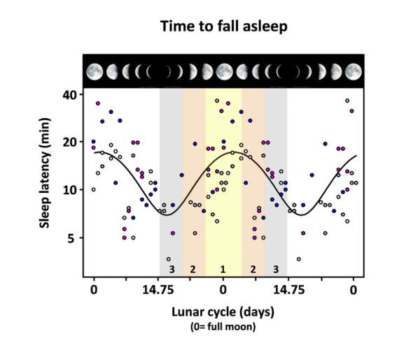 満月と睡眠時間