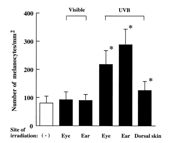 Ultraviolet_B_irradiation_of_the_eye_activates_a_nitric_oxide-dependent_hyp_othalamopituitary_proopiomelanocortin_pathway_and_modulates_functions_of_al_pha-melanocyte-stimulating_hormone-responsive_cells_pdf(2_5ページ)