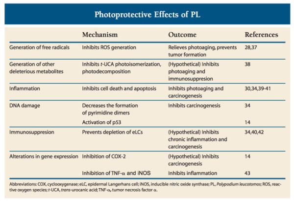 Polypodium leucotomosに関する論文