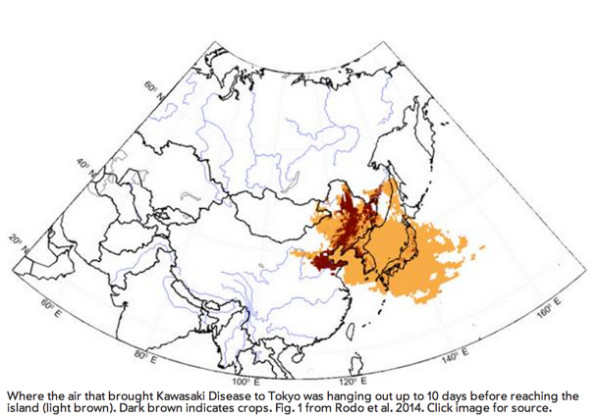 Kawasaki_Disease_Traced_to_Winds_from_Northeast_China_Carrying_Unusual_Fungal_Load___The_Artful_Amoeba__Scientific_American_Blog_Network