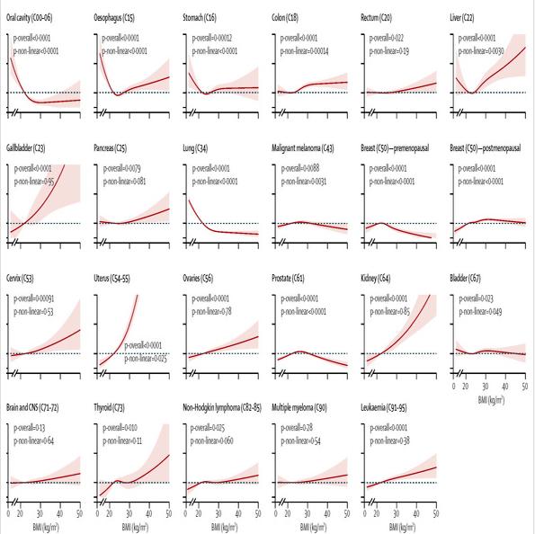 肥満とがんの関係グラフ