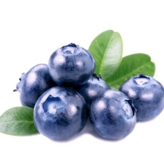 サプリに使われるフルーツの王様ブルーベリーと糖尿病の関係について