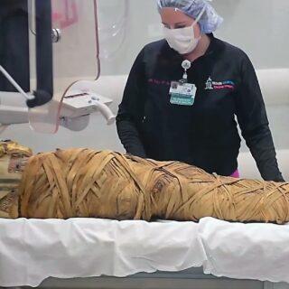 エジプトのミイラはガン転移が少ない?