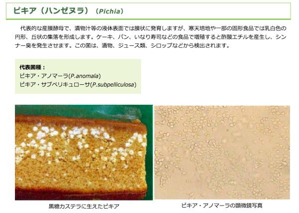 カビとカビ毒 ピキア(ハンゼヌラ)|「食品衛生の窓」東京都福祉保健局