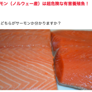 鮭やマグロは食べてはいけない・・・そんなわけありません
