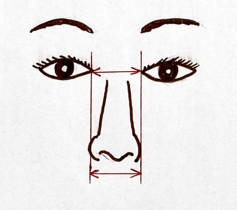小鼻縮小術のデザイン