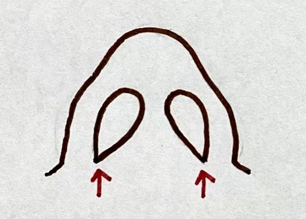 逆水滴型の鼻の穴