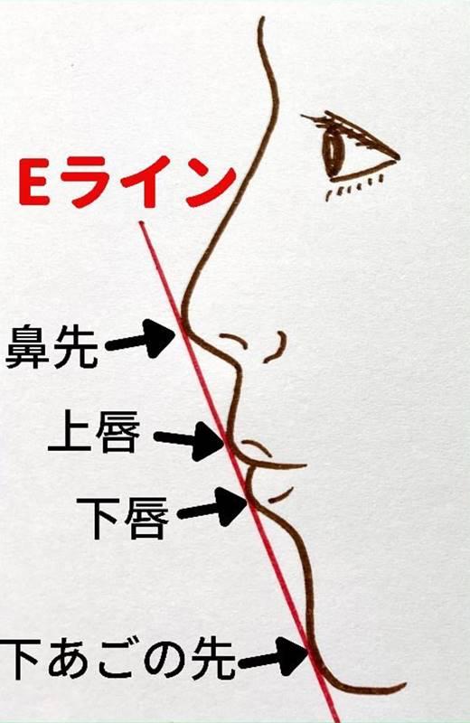 日本人の理想的なEライン 鼻先・上唇・下唇・下あごの先の全ての点がEライン上に一直線に重なるのが、日本人の理想的なEラインとされています。