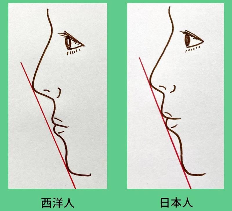 鼻先・上唇・下唇・下あごの先の全ての点がEライン上に一直線に重なるのが、日本人の理想的なEラインとされています。 日本人は西洋人と比べて鼻が低く下あごも小さいので、相対的に唇が前に出る傾向があるためです。