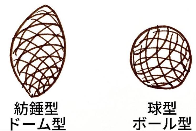 オステオポアのふたつの形状・紡錘型ドーム型と球型ボール型