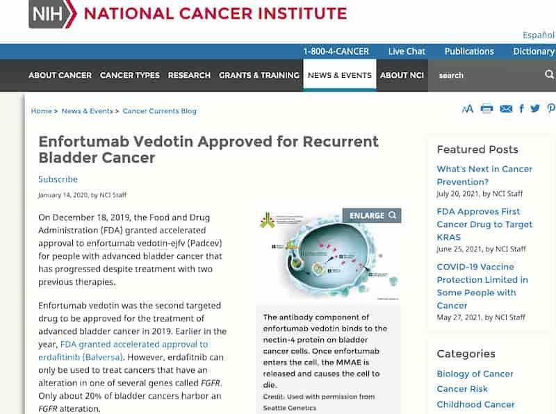 再発性膀胱がんに対して承認されたエンフォルツマブベドチン